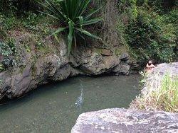 Rio Vagantes