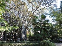 Jardin de Ayora