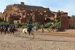 Centre Dar Equestre