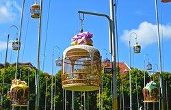 Kebun Baru Birdsinging Club
