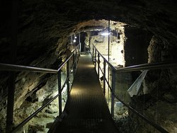 Centre Archeologique De La Grotte Scladina