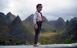 Vietnam Rejser - Day Tours