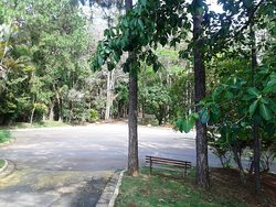 Parque Natural Municipal Chico Mendes