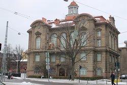 Μουσείο Φυσικής Ιστορίας (Luonnontieteellinen Museo)