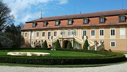 Chateau Dobris