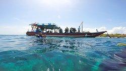 潛水和浮潛