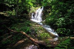 Waterfall trekking
