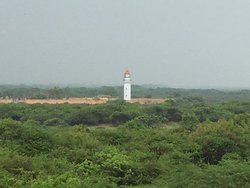 Kodikkarai Wildlife Sanctuary (Point Calimere)