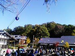 平成記念公園日本昭和村