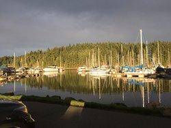 The marina in front of Carlos O'Bryan`s 1724 Stewart Ave, Nanaimo, British Columbia