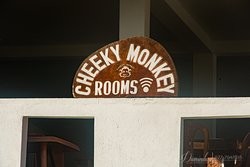Cheeky Monkey Guesthouse / Surf Camp / Surf Shop / Restaurant