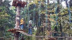 PandaPark Meshherskiy Rope Park