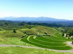 Ogi Rice Terraces