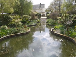 Reg's Garden
