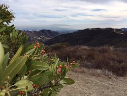 Westridge-Canyonback Wilderness Park