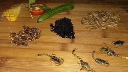 Insectes et viandes exotiques
