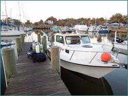 Gulf Coast Charter and Fishing