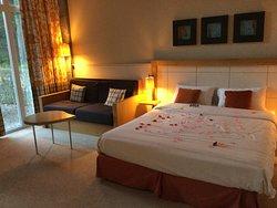 最佳西方迪納特德普特酒店