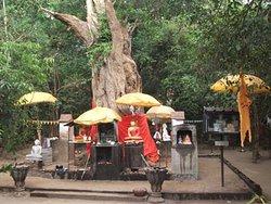 Kebiliththa - Siyambalawa devalaya