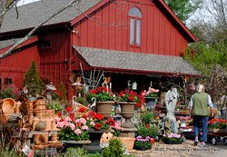 Monches Flower Farm
