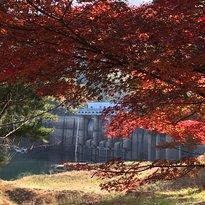 Taman Dam Ono