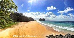 Noronha Adventure