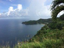 Unique Tours Tobago -Tours