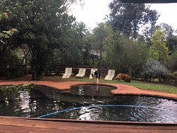 Amazing, cozy & cute B&B near Jo'burg!