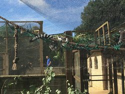 Heythrop Zoologicial Gardens