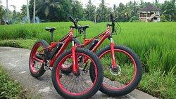 Bali E-Bike Tours