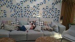 Ambiente de relax, buen ambiente para familias