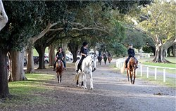 Papillon Riding Stables