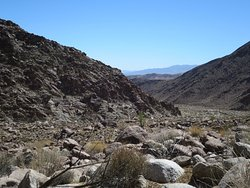 Borrego Palm Canyon Nature Trail