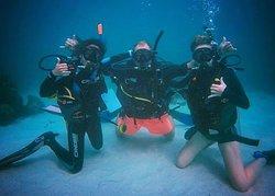 Mojo Divers