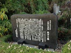 森津の藤公園 石碑