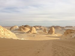 Oasis Egypt Safari
