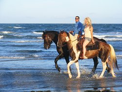 ‪Horses On The Beach: Corpus Christi‬