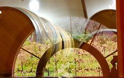 ZD Wines