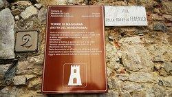 Torre del Barbarossa