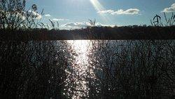 Plainsboro Preserve