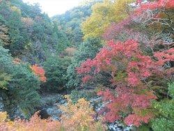 Mt. Nihon Koba