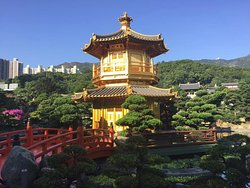 Hong Kong Getaway Private Tours