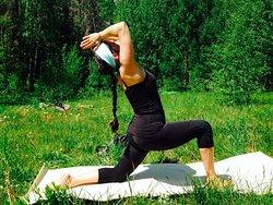 Elevated Yoga & Holistic Health