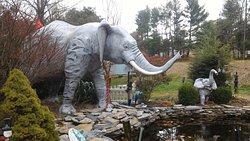 Mister Ed's Elephant Museum
