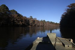 Caddo Outback Backwater Tours