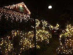 Che meraviglia! Andateci durante il periodo natalizio