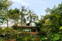 Rumah Sumatra private jungle villa
