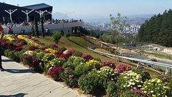 Sunnyland Sarajevo