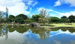 リリウオカラニ ガーデン