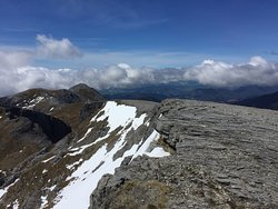 Mount Arthur